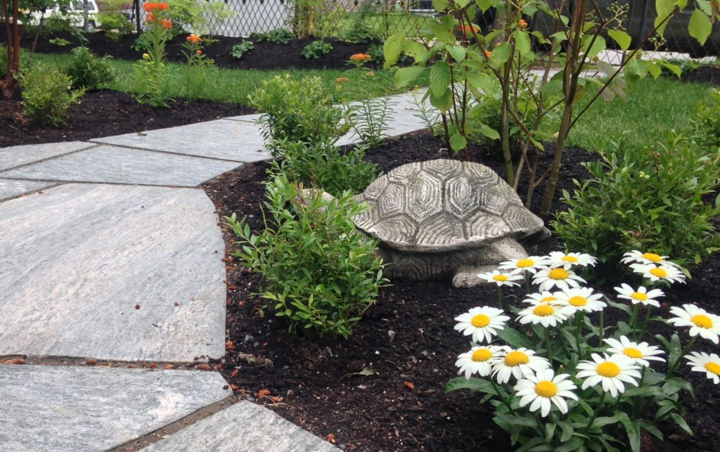 Garden Art- Turtle with Stone Path